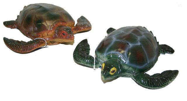 korytnačka, 2 druhy, 21 cm