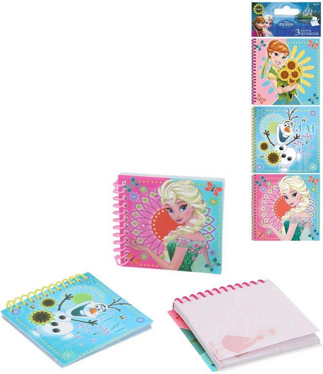 Set zápisnikov Frozen, 3 ks
