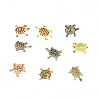 želvy, 9 ks v sáčku
