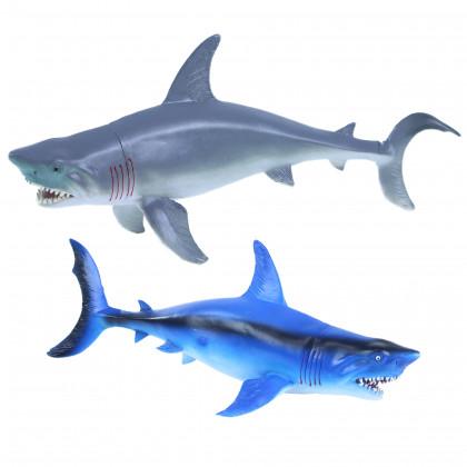 žralok, 2 druhy, 34 cm