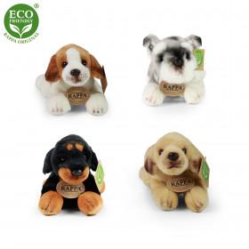 plyšový pes ležící, 4 druhy, 16 cm