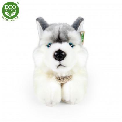 Plyšový pes husky ležící, 30 cm
