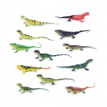 Jašter so zvukom, 12 druhov, 35 cm